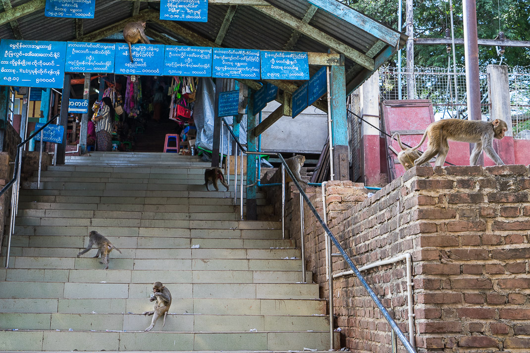 Mount Popa Entrance Stairway